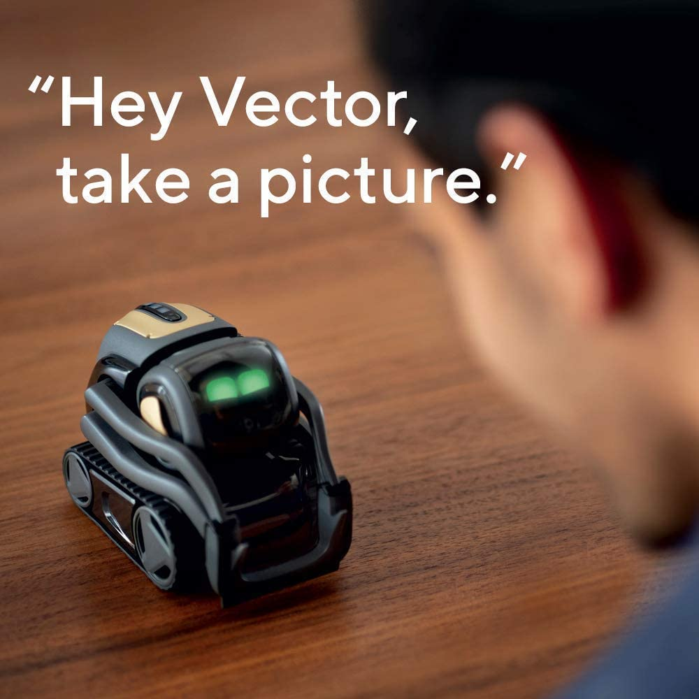 Vector Robot is Not Only a Toy But Also a STEM Gadget
