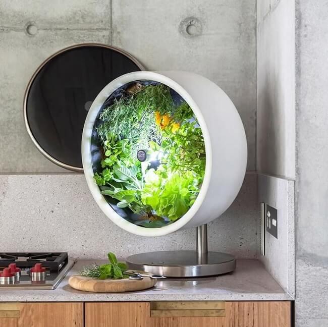 Rotofarm indoor vegetables