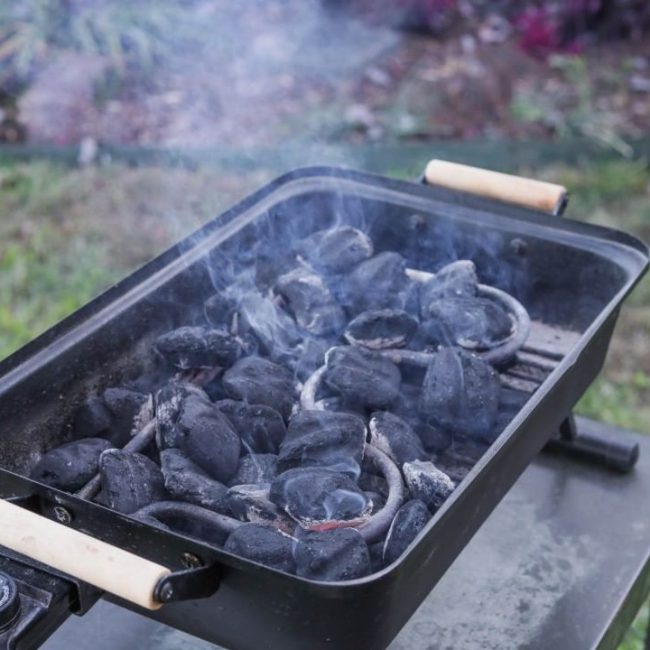 Self Igniting Charcoal Grill