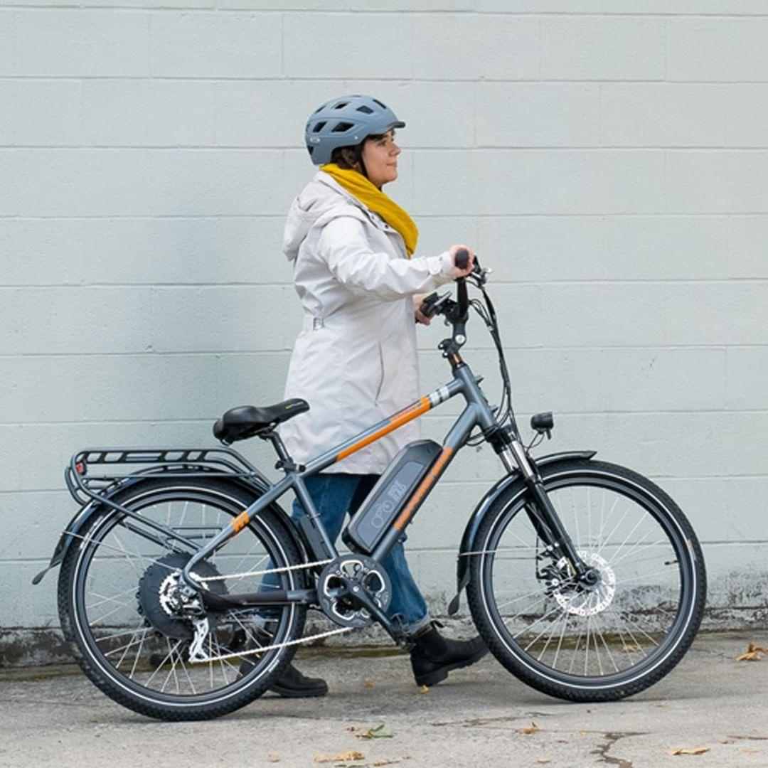 RadCity 4 Electric Bike